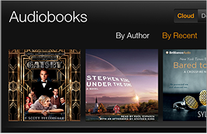 The Audiobooks library on Kindle Fire