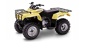 2004 Honda TRX250TM FourTrax Recon:Main Image