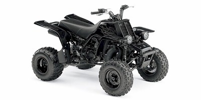 Yamaha YFZ350 Banshee Parts and Accessories: Automotive: Amazon.com