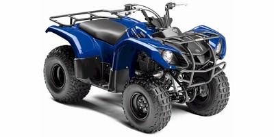 Yamaha Raptor Atv For Sale   Car Interior Design