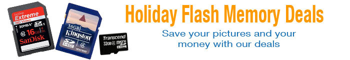 Great Holiday Deals on Flash Memory