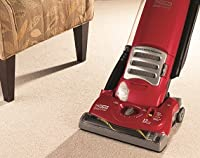 Eureka 4870MZ - Cleaning Path