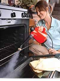 HAAN AllPro HS-20R Sanitizing Steam Cleaner