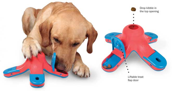 Food Puzzle Toys For Small Dogs