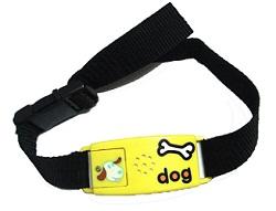 Pettag Classic Collar