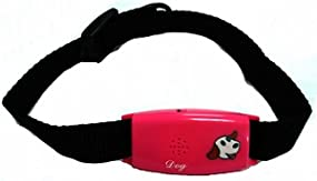 Pettag Classic Collar