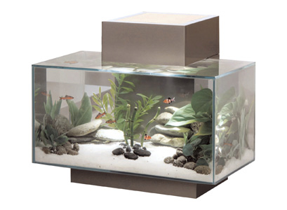 Fluval Edge Aquarium Set Black