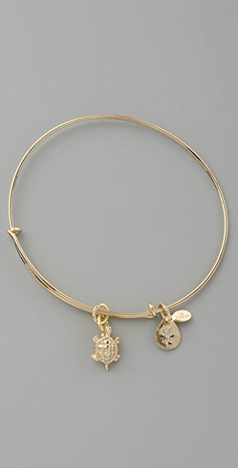 Alex and Ani Turtle Expandable Bangle