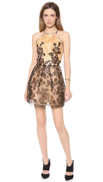 Alex Perry Dara Mini Dress