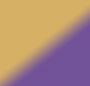 Gold/Purple