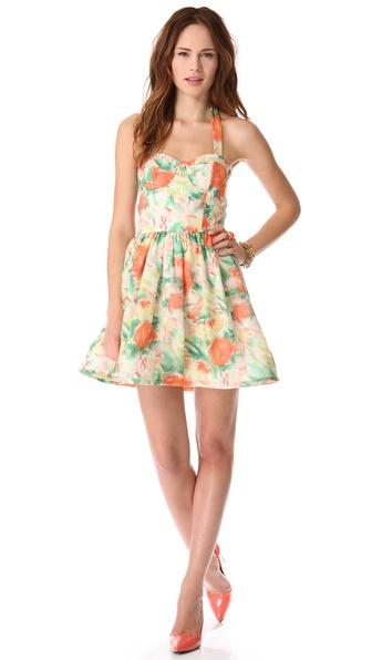 alice + olivia Fleur Bustier Flare Dress