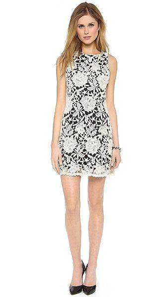 alice + olivia Jolie Sleeveless A Line Dress