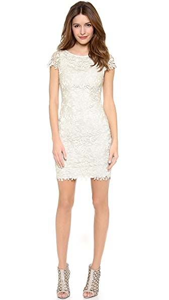 alice + olivia Clover Lace Fitted Midi Dress