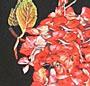 Castaway Floral
