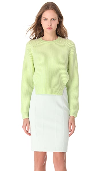 Alexander Wang Dickey Crew Neck Sweater