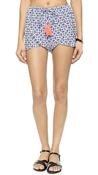 Shop Basta Surf online and buy Basta Surf Baja Shorts Zinnia Blue Print swimwear online