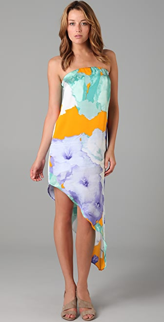 BB Dakota Rochelle Print Dress / Skirt
