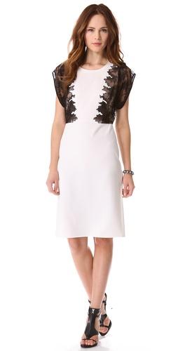 BCBGMAXAZRIA Lace Panel Dress