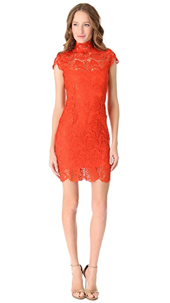 Blaque Label Lace Short Sleeve Dress