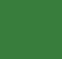 Dark Moss Green/Gold