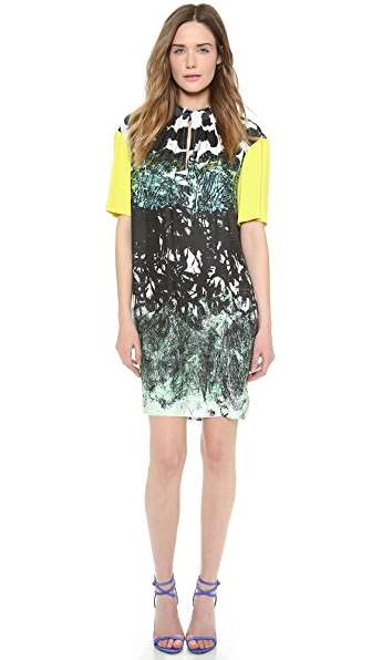Cedric Charlier Printed Short Sleeve Dress