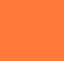Desert Hibiscus