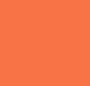 Desert Hibiscus/White Logo