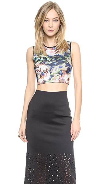 Clover Canyon James Joyce Crop Top