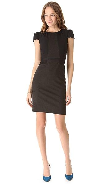 Club Monaco Ava Sheath Dress