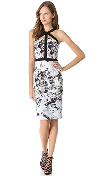 Cushnie et Ochs Print Sleeveless Dress