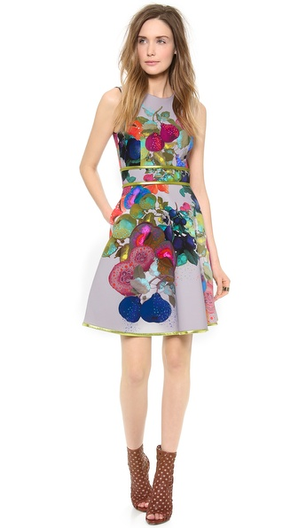 Cynthia Rowley Bonded Full Skirt Dress