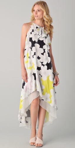 Diane von Furstenberg Nascha Dress
