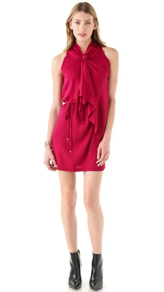Diane von Furstenberg Morana Tie Dress