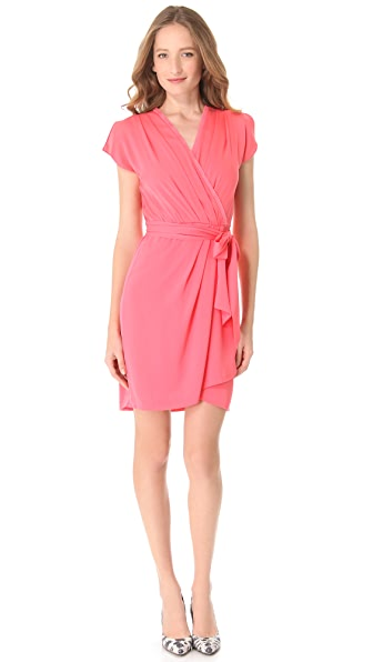 Diane von Furstenberg Mateo Dress