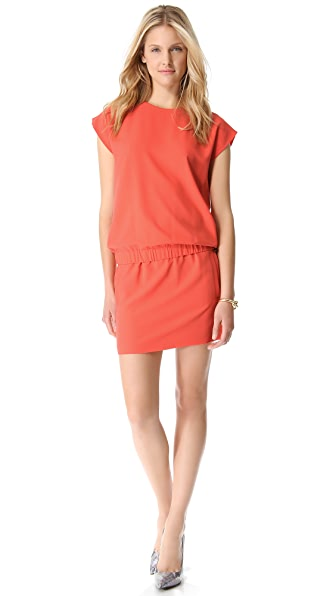 Diane von Furstenberg Tara Dress
