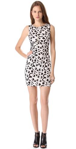 Diane von Furstenberg Glasmery Dress