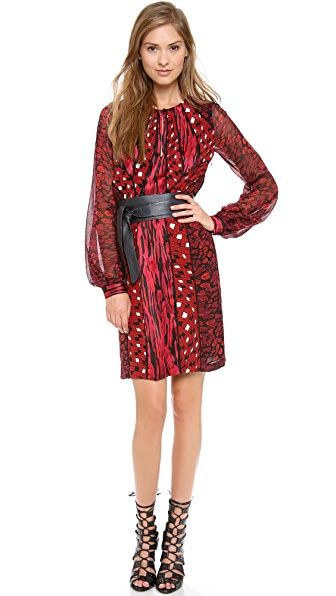 Diane von Furstenberg Kit Print Chiffon Dress