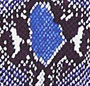 Python Pop Medium Blue Iris
