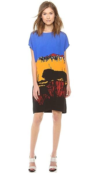 Diane von Furstenberg Harriet Print Dress