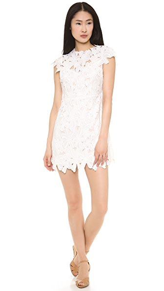 Dolce Vita Jayleen Dress