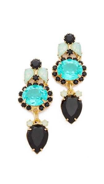 Elizabeth Cole Small Drop Earrings