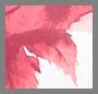 Retro Cream/Persian Red