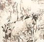 Magnolia Combo