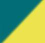 Neon Yellow/Turquoise