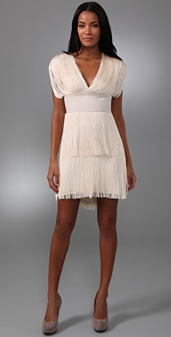 Haute Hippie Fringe Dress