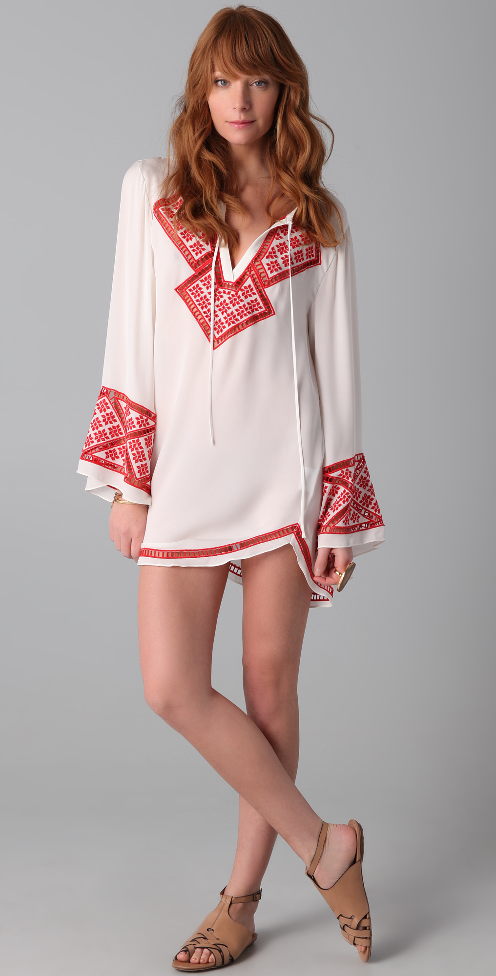 Haute Hippie Embroidered Dress