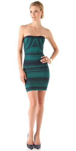 Herve Leger Strapless Printed Dress