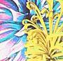 Climber Flower Print