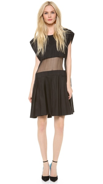 Karla Spetic Sheer Panel Box Dress
