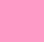 Neon Pink/Blush